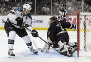 Sharks Ducks Hockey