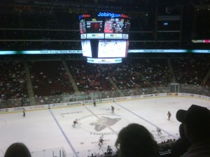 Phoenix Crowd 1