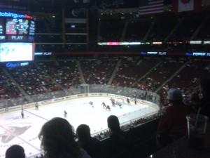 Phoenix Crowd 3