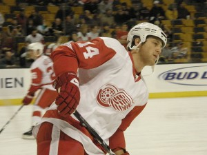 Derek Meech, Winnipeg Jets, Detroit Red Wings