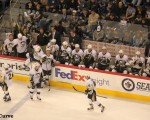 Penguins bench