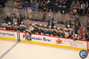 Bruins bench (September 26, 2013)