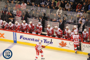 Wings bench (November 4, 2013)