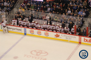 Coyotes bench (January 13, 2014)