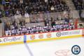 Oilers bench (December 3, 2014)
